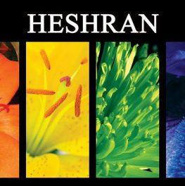 HESHRAN Wedding Decor