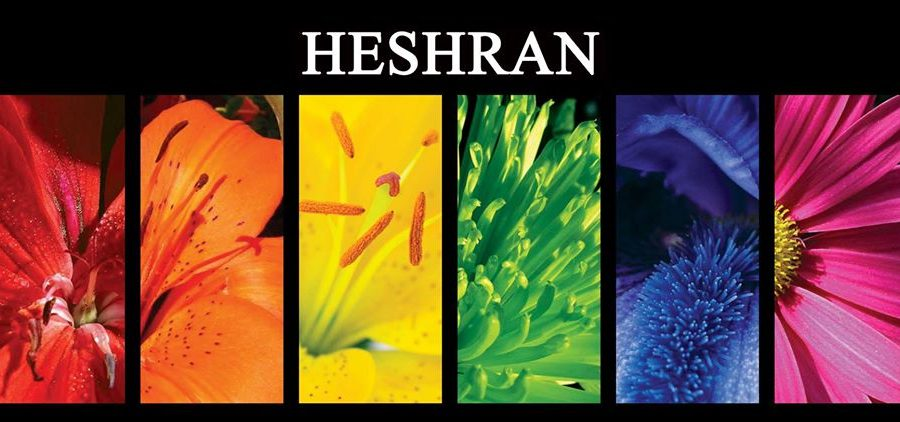 HESHRAN Wedding Decor